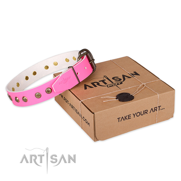 Reliable buckle on leather collar for your lovely doggie