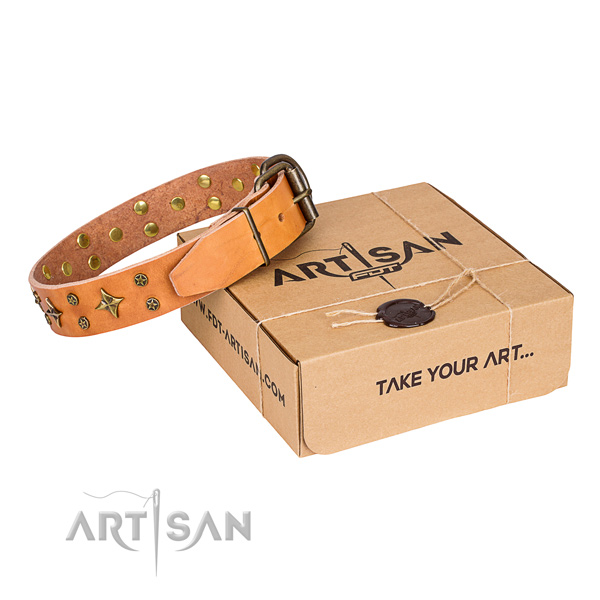 Daily use dog collar of fine quality full grain genuine leather with decorations