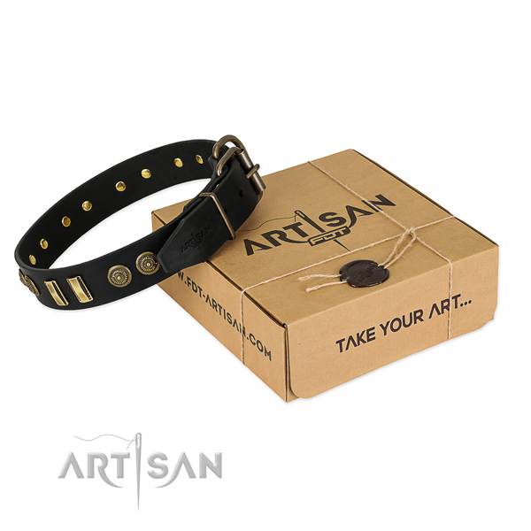 Rust-proof traditional buckle on full grain leather dog collar for your canine