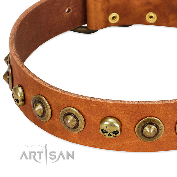 Awesome decorations on full grain natural leather collar for your canine