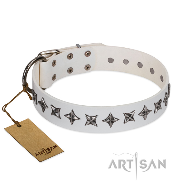 Daily use dog collar of best quality genuine leather with studs