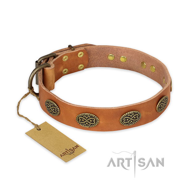 Significant full grain genuine leather dog collar with rust resistant hardware