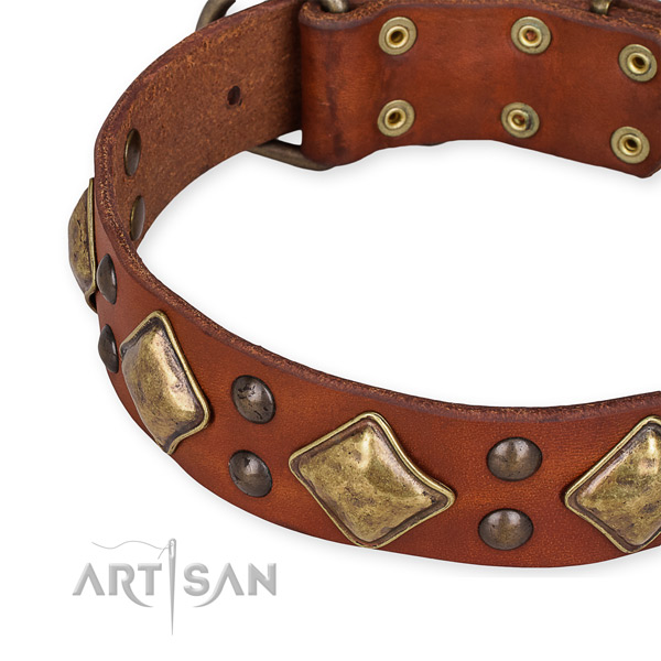 Full grain genuine leather collar with corrosion resistant hardware for your attractive dog