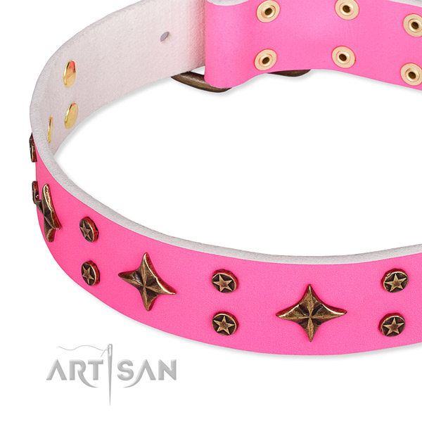 Comfy wearing studded dog collar of reliable full grain natural leather