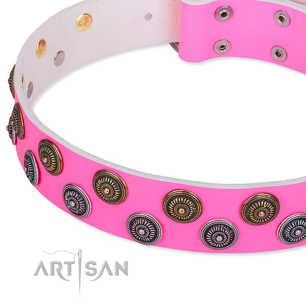 Stylish walking embellished dog collar of fine quality full grain leather