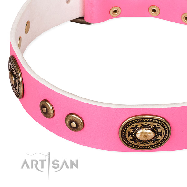 Full grain leather dog collar made of reliable material with adornments