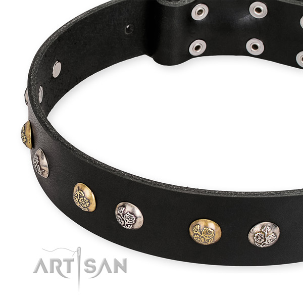 Genuine leather dog collar with stylish reliable embellishments