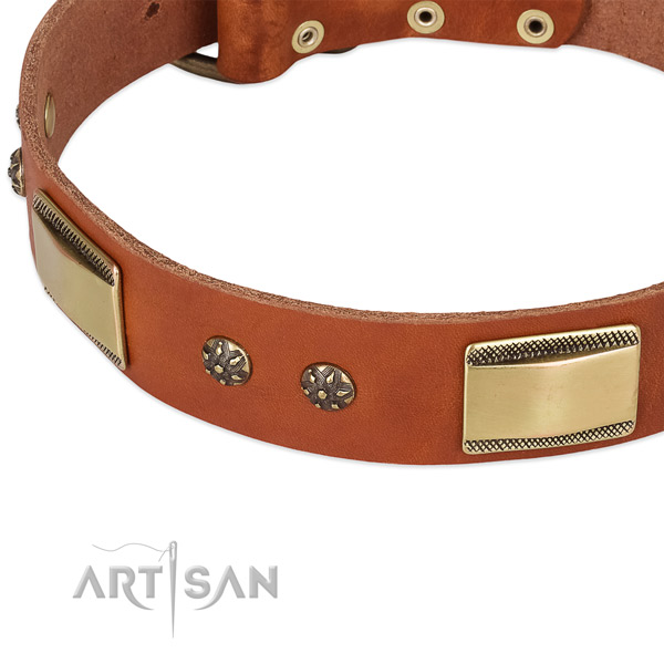 Corrosion proof fittings on full grain natural leather dog collar for your pet