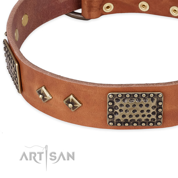 Rust resistant studs on natural leather dog collar for your dog