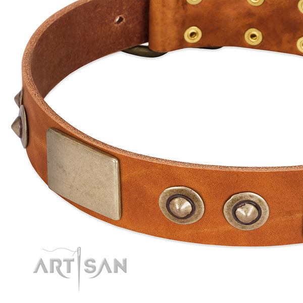Corrosion proof buckle on full grain leather dog collar for your dog