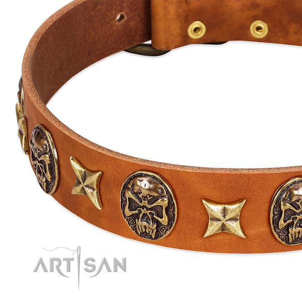 Rust-proof decorations on genuine leather dog collar for your dog
