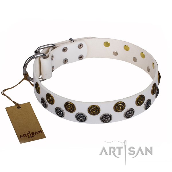Daily use dog collar of reliable full grain natural leather with decorations
