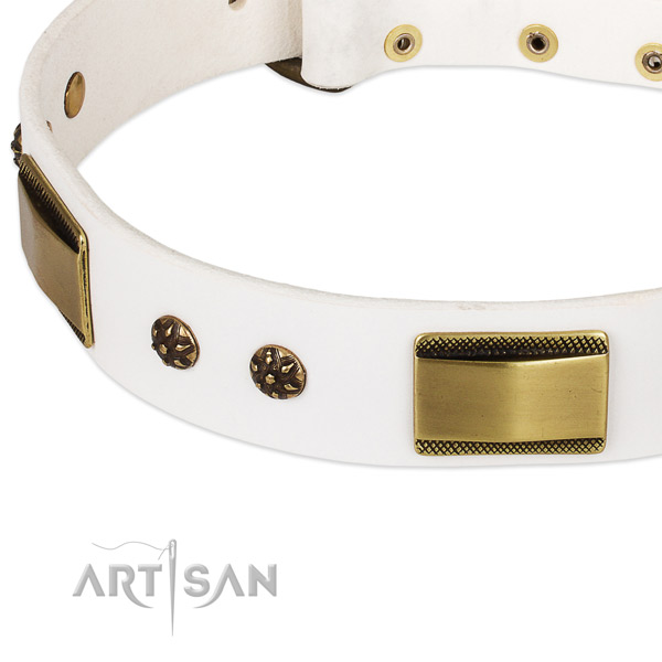 Durable decorations on natural genuine leather dog collar for your canine