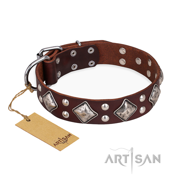 Daily walking inimitable dog collar with strong fittings