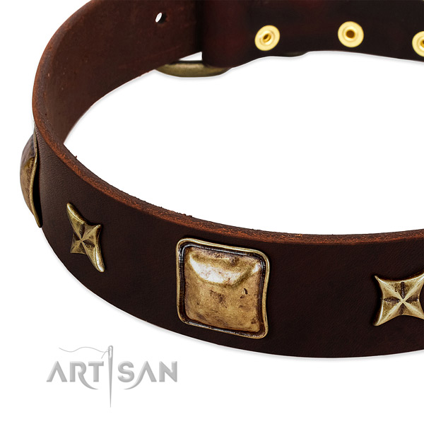 Strong traditional buckle on leather dog collar for your pet