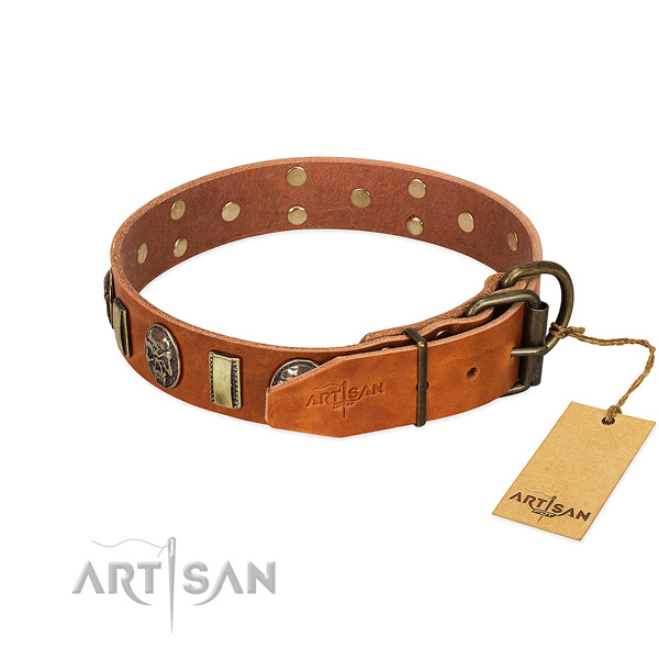 Durable buckle on full grain natural leather collar for walking your canine