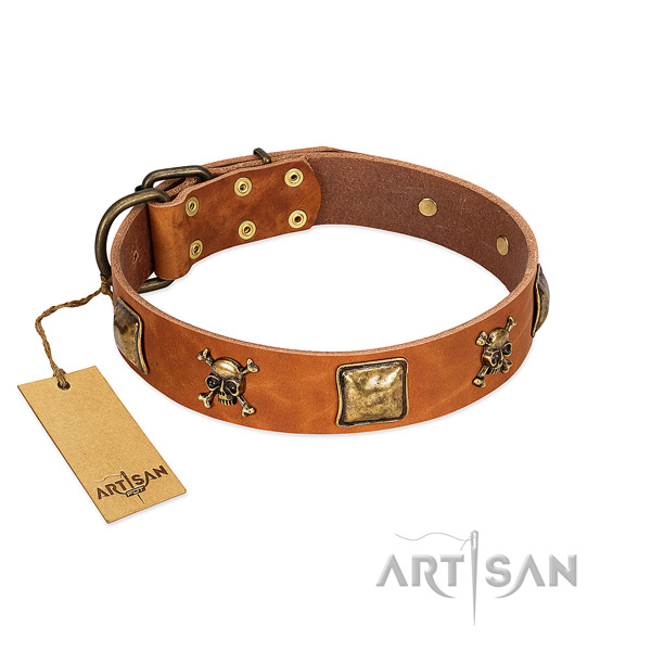 Stylish genuine leather dog collar with durable studs