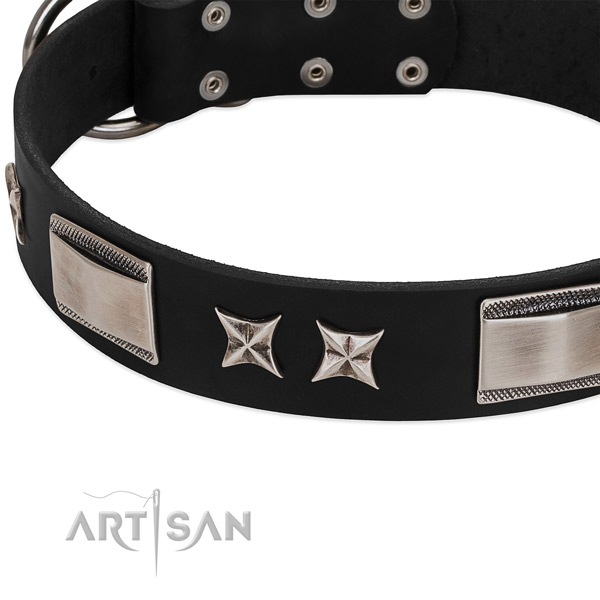 Quality full grain leather dog collar with corrosion proof buckle