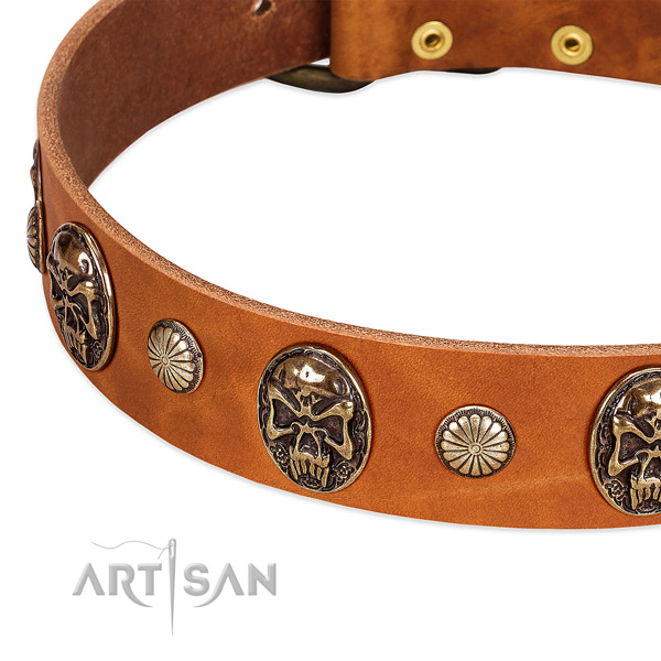 Strong D-ring on full grain leather dog collar for your canine