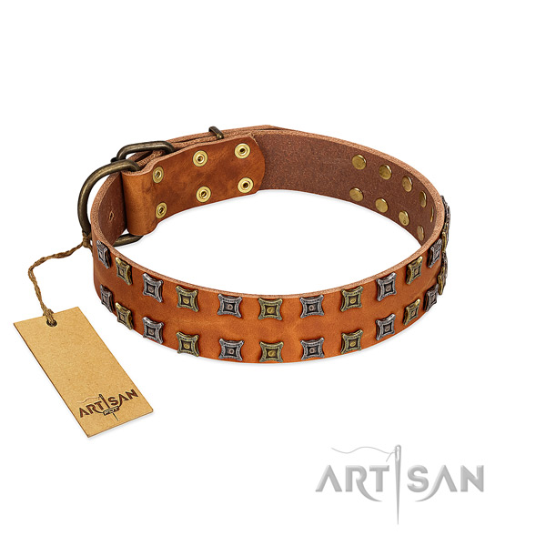 Top notch natural leather dog collar with adornments for your canine