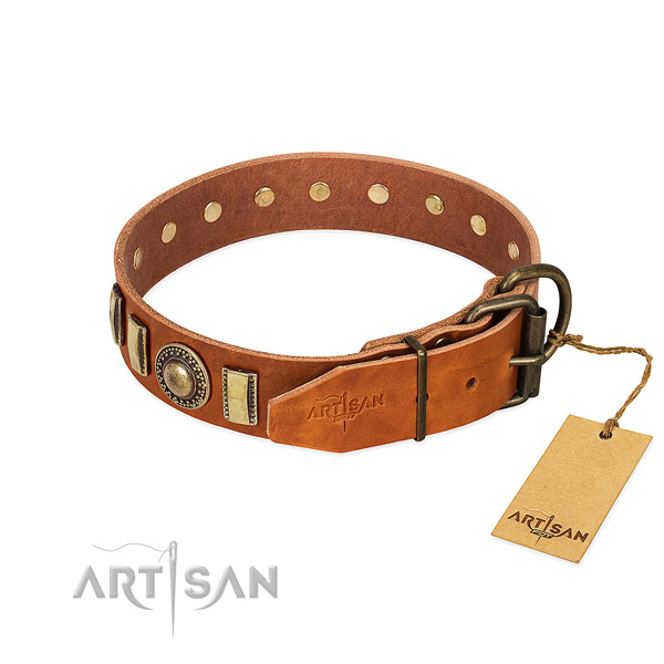 Adorned leather dog collar with durable D-ring