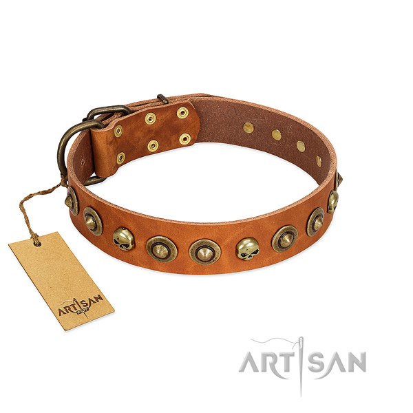 Leather collar with unusual adornments for your dog