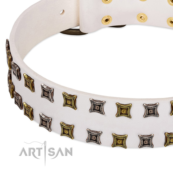 Full grain leather dog collar with decorations for your stylish pet