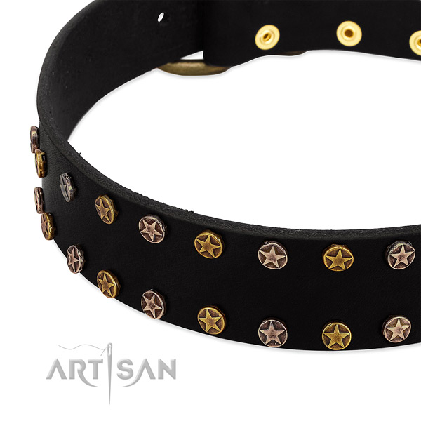 Extraordinary decorations on leather collar for your canine