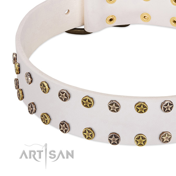 Significant studs on full grain leather collar for your pet