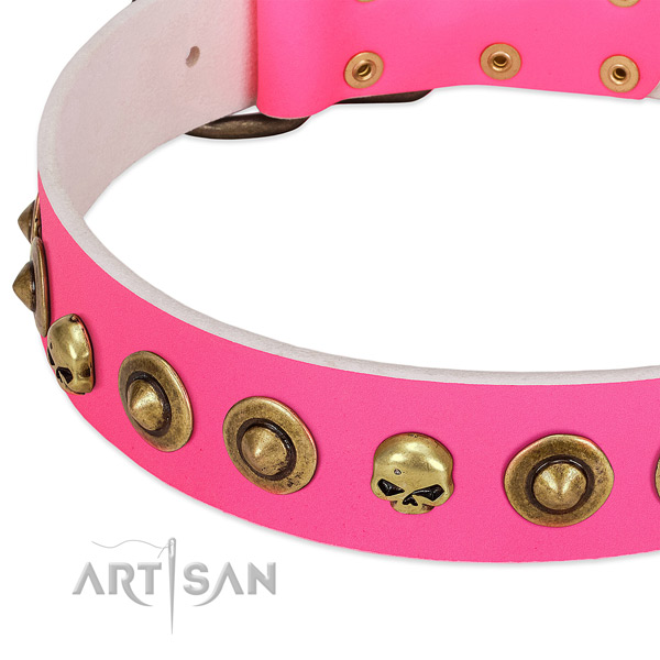 Exceptional studs on full grain leather collar for your pet