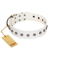 """Fresh Breeze"" FDT Artisan Elegant White dog Collar with Silvery Studs"