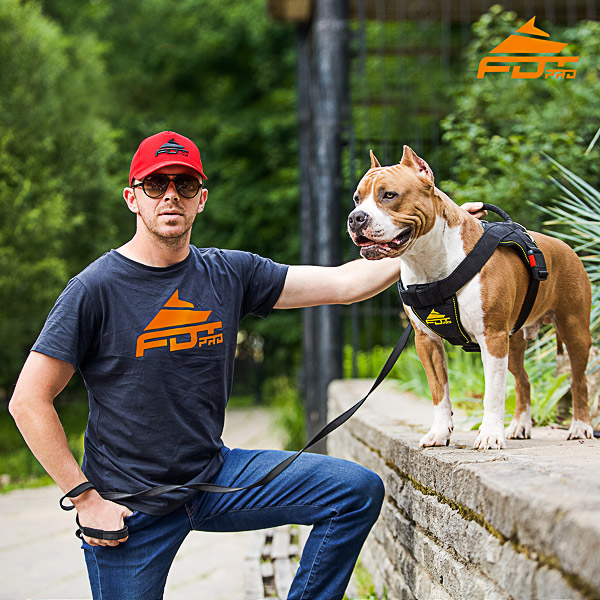 Men T-shirt of Fine Quality Cotton with Orange Logo for Dog Training
