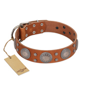 """Far Star"" FDT Artisan Tan Leather dog Collar with Engraved Studs"