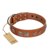 """Antique Figures"" FDT Artisan Tan Leather dog Collar with Silver-like Engraved Plates"