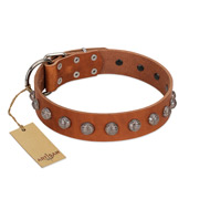 """Heroic Deeds"" Designer Handmade FDT Artisan Tan Leather dog Collar"